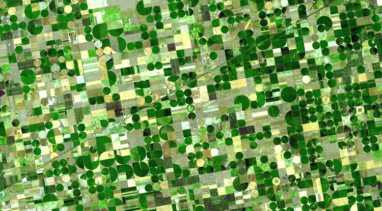 Photo: Green circles in this satellite image of southwestern Kansas are crops being watered by central pivot irrigation which draws water from a well in the center of each field. Some of the water is groundwater from deep under the Great Plains states. Credit: NASA
