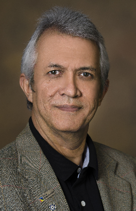 Photo Regents Professor Hoshin Gupta